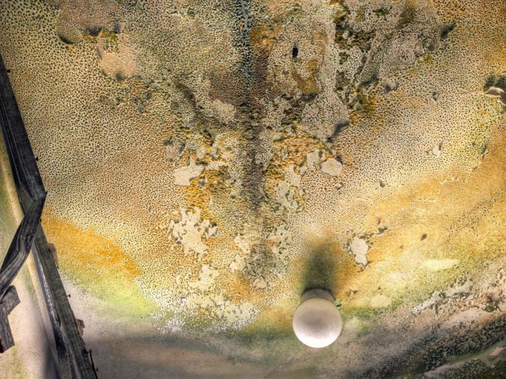 water damage ceiling mold